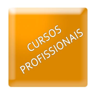 cursos profissionais no Porto